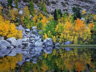 обои Осенние цвета на озере. Калифорния фото