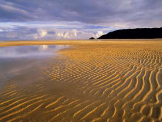 обои Low Tide,   Abel Tasman National Park,   South Island,   New Zealand фото