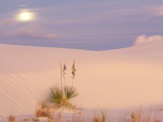 обои Full Moon Over Dunes,   White Sands National Monument,   New Mexico фото