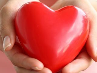 обои Сердце в руках фото