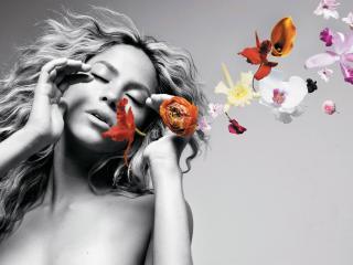 обои Шакира и бабочки фото