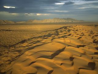 обои El Pinacate Gran Desierto del Altar Biosphere Reserve,   Sonora,   Mexico фото