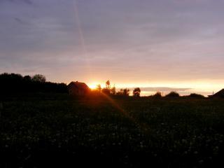 обои Заход солнца фото