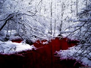 обои Река крови на снегу фото