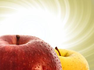 обои Два яблока фото