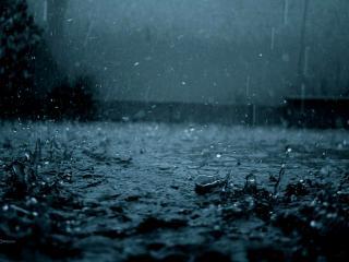 обои Дождь на тротуаре фото