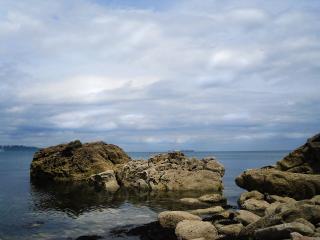 обои Каменный берег фото