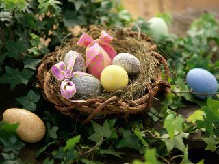 обои Easter Greetings фото