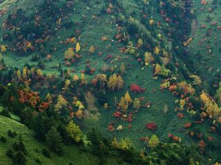 обои Природа мазками кисточки оставила яркие следы на склонах гор фото