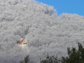 обои Домик внутри зимнего леса фото