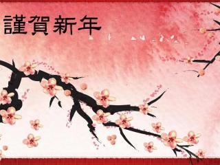 обои Ветви сакуры фото