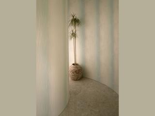 обои Китайская ваза с пальмой фото