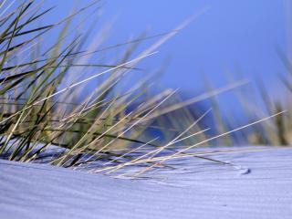 обои Серебряный пляж фото