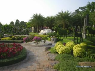 обои Экзотический сад с ухоженными дорожками фото