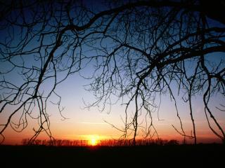 обои Зимний закат фото