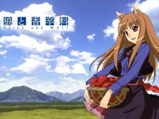 обои Волчица с корзиной яблок фото