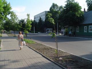 обои Идущая по улице фото
