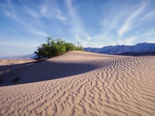 обои Песчаная пустыня фото