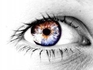 обои Глаз смотрит вдаль фото