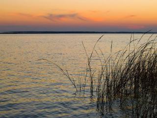 обои Широкая река фото