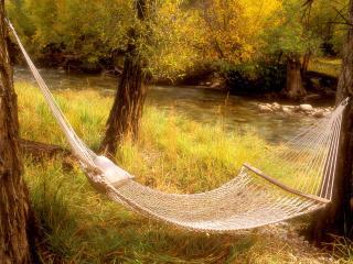 обои Peaceful Hammock Near a Stream,   Colorado фото
