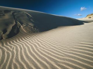 обои Sand Dunes in Fraser Island,   Australia фото