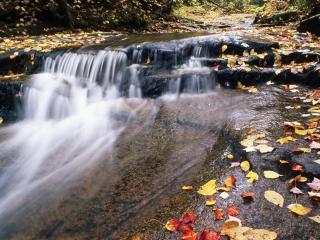 обои Осень - водопад фото