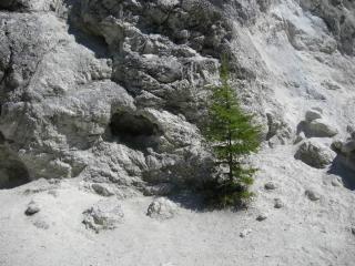обои Аршан. Пещерка фото
