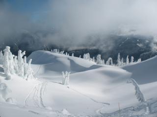 обои Снежные просторы фото