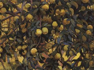 обои Яблоки на ветках. 1910 фото