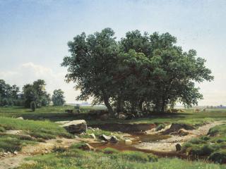 обои Дубки. 1886, холст, масло, 37,5х62 см фото
