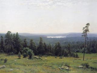 обои Лесные дали. 1884, холст, масло, 113х164 см фото