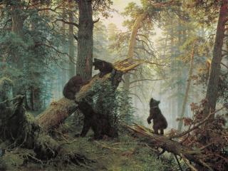 обои Утро в сосновом лесу. 1889, холст, масло, 139х213 см фото
