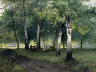 обои Березовый лес. 1908, холст, масло. 110х143 см фото