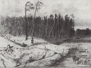 обои Лес у воды. 1872 фото