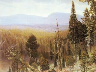 обои Тайга на Урале. Синяя гора фото