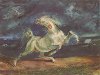 обои Лошадь, испуганная молнией фото
