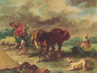 обои Марроканец и его конь фото