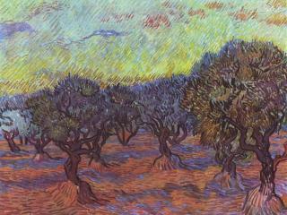 обои Ван Гог Винсент Виллем-Роща олив фото