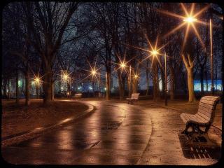 обои Вечерняя аллея фото