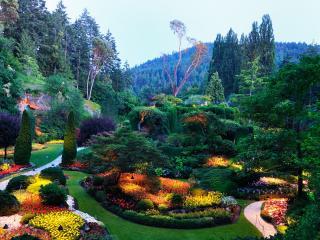 обои Изумительный цветочный ландшафт фото