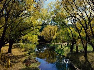 обои Парк у пруда фото