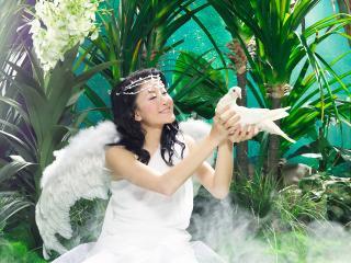 обои Азиатка с крыльями фото