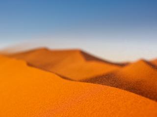 обои Песяанные барханы пустыни Сахара фото