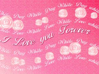 обои Плакат I love you forever фото