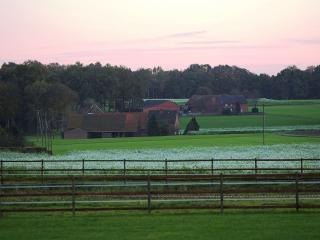 обои Ранчо в полях фото