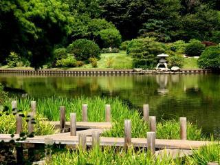 обои Декоративный пруд с пристанью фото