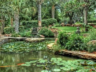 обои Великолепный ухоженный участок сада с прудом фото
