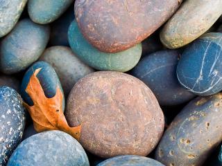 обои Камни и осенний лист фото
