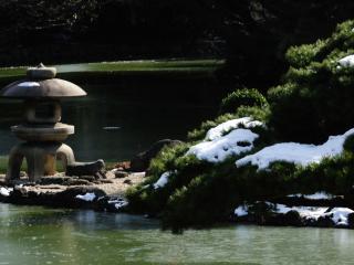 обои Японская декорация и последний снег на дереве фото